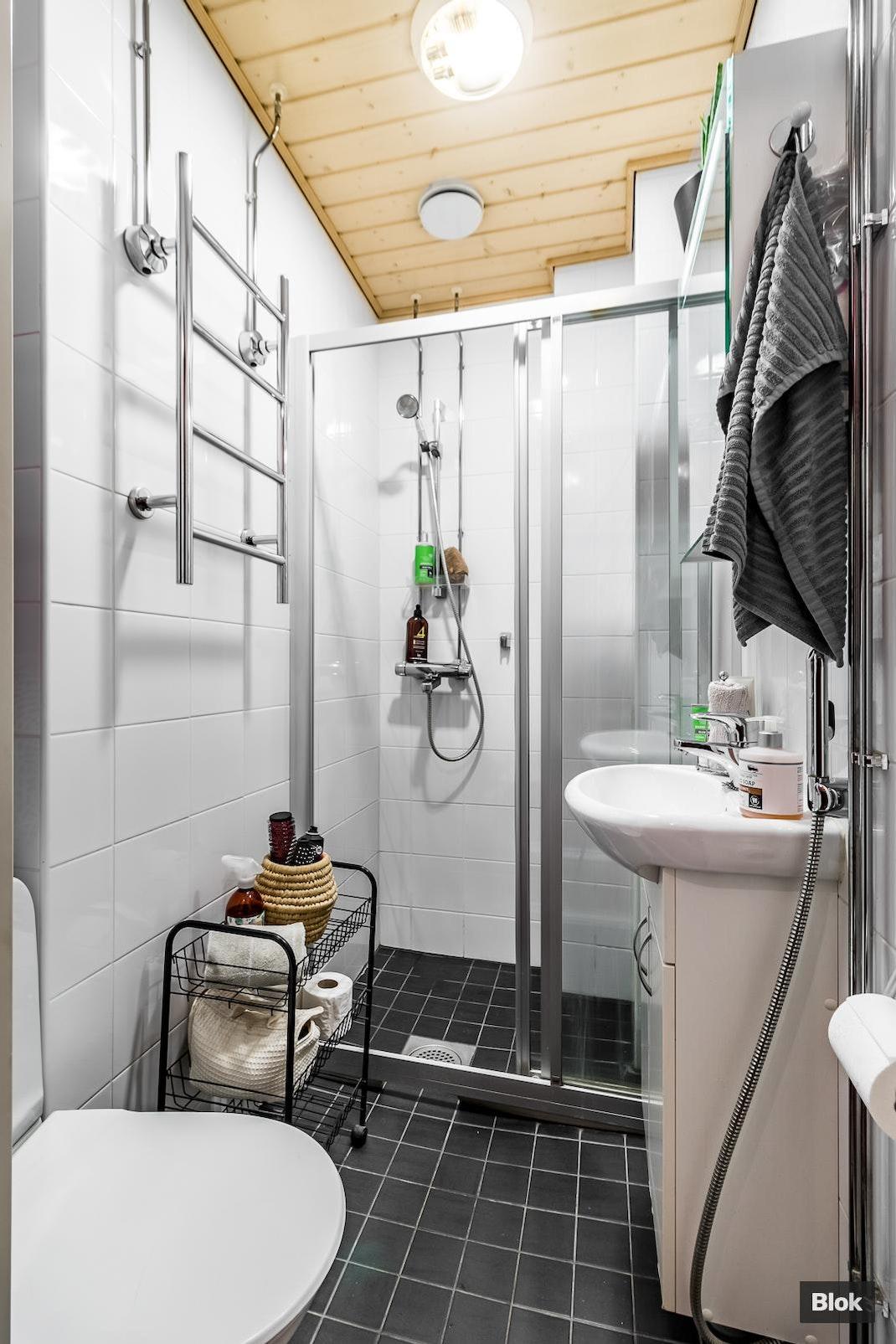 Aleksis Kiven Katu 12 Kylpyhuone