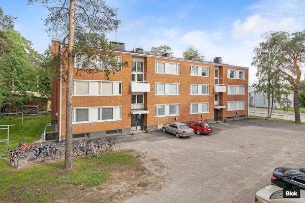 Putkiremontoitu yksiö Oulujoen vieressä! - Hintantie 13